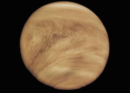 Venus!